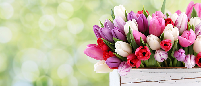 MediaMath Blog - Tips for Mastering Mother's Day 2016